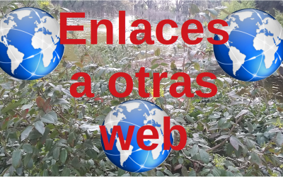 Enlaces web de interes